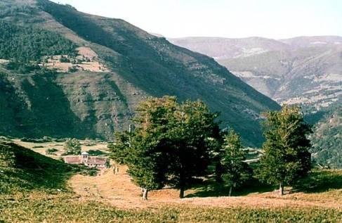 The Pines At Garabandal