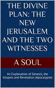 Free ebook the divine plan the new jerusalem and the two free ebook the divine plan the new jerusalem and the two witnesses by a soul mary queen of peace fandeluxe Ebook collections